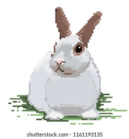 Old school 8 bit pixel art rabbit sitting on the ground. Cute pet bunny icon isolated on white background. Side view hare symbol. Retro video/pc game wild animal character. Easter bunny