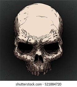 OLD SKULL VECTOR with editable color