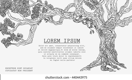 Old Tree. Vector Sketch Isolated on White Background Has a Special Place for an Inscription