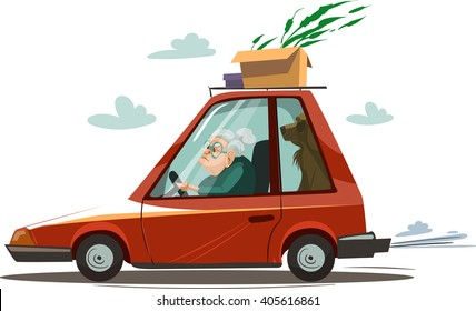 Old woman drive a red car. Vector illustration