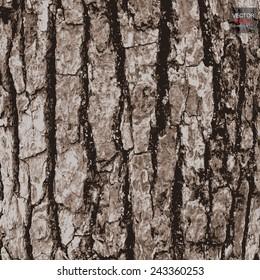 Old wood texture of tree bark. Vector illustration.