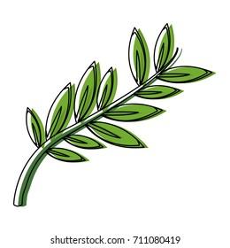 olive branch leaf peace flora symbol