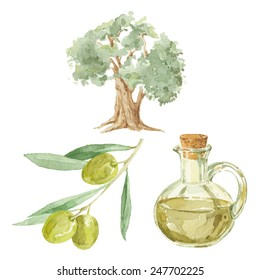 Olive branch,  tree  and a bottle of olive oil drawing by watercolor. Hand drawn isolated vector illustration on a white background.