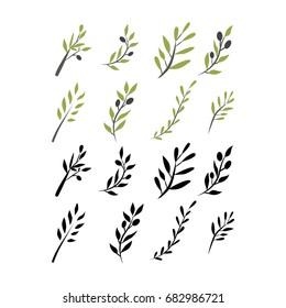 Olive brunch set. Vector illustration