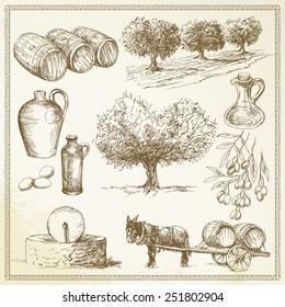olive - hand drawn set