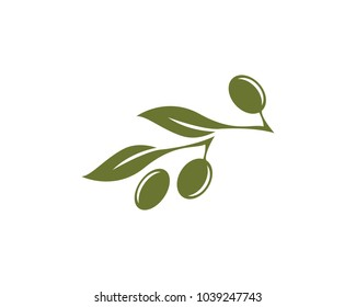olive logo template vector design