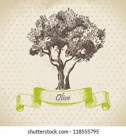 Olive tree. Hand drawn illustration