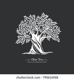 Olive tree. Nature. Vector silhouette illustration. Organic food.