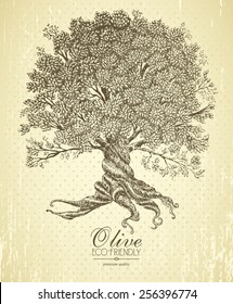 Olive tree with roots on rough background. Arbor day poster in vintage style.