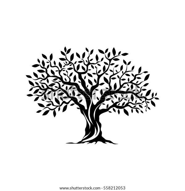 Olive tree silhouette icon isolated on white background. Web infographic modern vector sign. Premium quality illustration logo design concept pictogram.