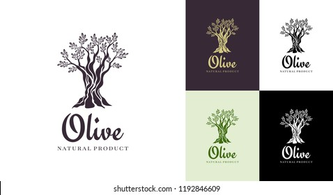Olive tree vector logo design template for oil. Tree olive silhouette.