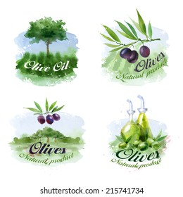 Olive. Vector format