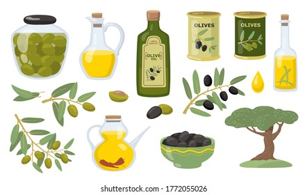 Olive vector illustration set. Black and green olive tree branches, glass bottle and jug of oil, bowl, jar and cans. Vector illustration for healthy food or cooking concept