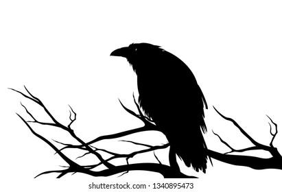 ominous raven sitting on a bare tree branch - black crow bird halloween theme vector silhouette design