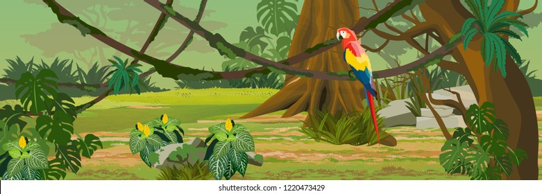 One adult macaw parrot sitting on a liana. Jungle. A tropical forest. Rainforests of Amazonia. Tree, epiphytic ferns, creepers, banana trees, flowers and monsteras. Realistic Vector Landscape