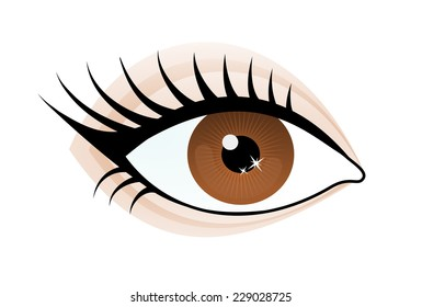 One beautiful brown color caucasian female eye wide open with eyebrow and eyelash. Eye icon, simple drawing graphic design, vector art image illustration, isolated on a white background
