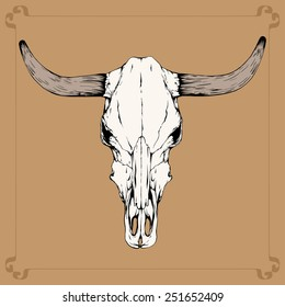 one bull (cow) skull with horns isolated on a terracotta background