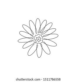 One continuous line drawing of beauty fresh bellis perennis for garden logo. Printable decorative common daisy flower concept for fashion fabric. Modern single line draw design vector illustration