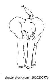 One continuous line drawing,   elephant was walking looking for something.