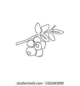 One continuous line drawing of whole healthy organic blueberries for orchard logo identity. Fresh blue berry fruitage concept for fruit garden icon. Modern single line draw design vector illustration