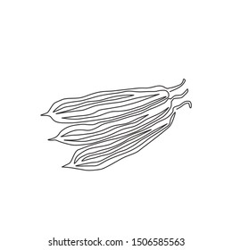 One continuous line drawing of whole healthy organic sponge gourd for farm logo identity. Fresh Egyptian cucumber concept for vegetable icon. Modern single line draw design vector illustration