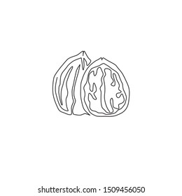 One continuous line drawing of whole healthy organic walnut food for plantation logo identity. Fresh nutshell concept for healthy seed icon. Modern single line draw design graphic vector illustration