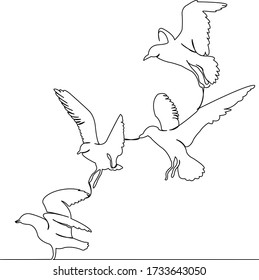 One continuous single drawing line art doodle bird, seagull, wing, gull, nature, flying. Isolated flat illustration hand draw contour on a white background