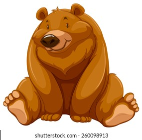 One fat brown bear on a white background