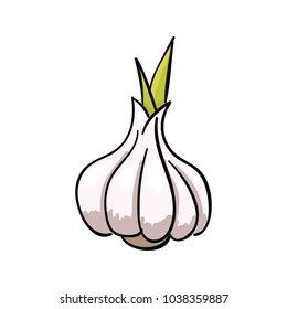 garlic cartoon images stock photos vectors shutterstock https www shutterstock com image vector one fragrant garlic bulb on white 1038359887