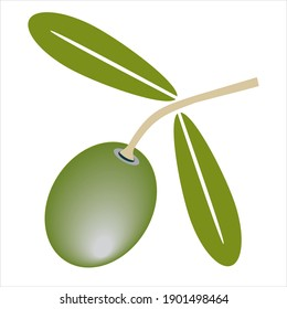 One green olive with two green leaves and stem. Flat vector illustration