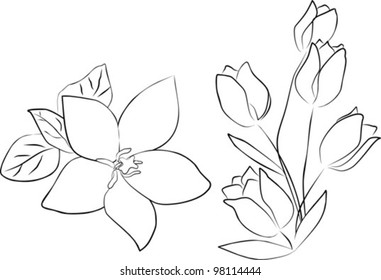 one hibiscus flower and tulip bouquet on a white background - vector illustration