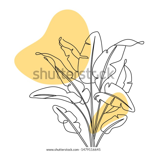 One Line Drawing Banana Leaves Modern Stock Vector Royalty Free 1479116645