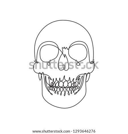 One Line Drawing Front View Human Stock Vector Royalty Free