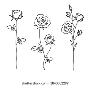 One line drawing. Garden rose with leaves. Hand drawn sketch. Set of flowers. Vector illustration.