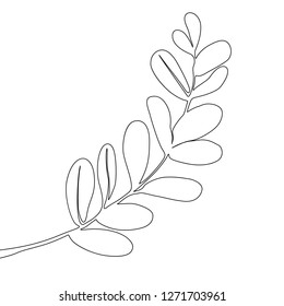 One line drawing tropical branch. Continuous line exotic plant.