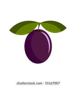 One ripe purple delicious plum with leaf vector illustration
