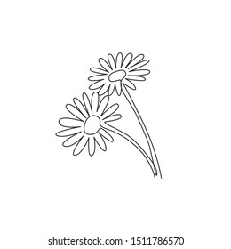 One single line drawing of beauty fresh bruisewort for garden logo. Printable decorative English daisy flower concept for textile ornament. Modern continuous line draw design vector illustration