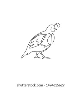 One single line drawing of funny valley quail for logo identity. California quail bird mascot concept for national conservation park icon. Modern continuous line draw design vector illustration