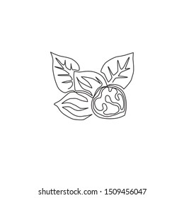 One single line drawing of whole healthy organic walnut food and leaves for orchard logo identity. Fresh nutshell concept for healthy seed icon. Modern continuous line draw design vector illustration