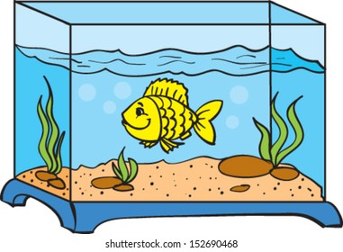 one small fish in an aquarium