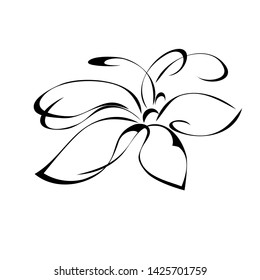 one stylized flower with large petals in black lines on white background