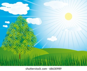 One tree in a meadow. Vector illustration