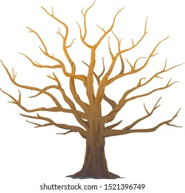 One wide massive old oak tree without leaves isolated illustration, majestic oak without foliage with a rough trunk and big crown