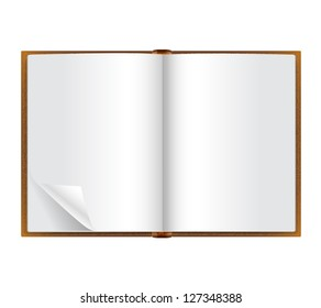 open book with blank pages