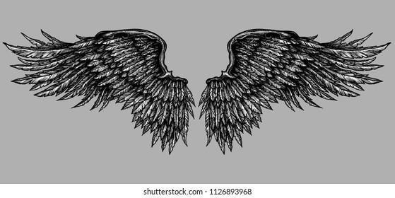 open grey wings