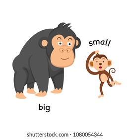 Opposite big and small vector illustration