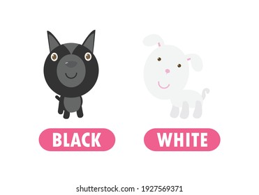 Opposite black and white, Words antonym for children with cartoon characters cute little dog, funny animal Flat vector illustration isolated on white background