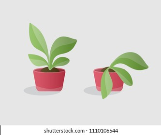 1000+ Wilted Plant Stock Images, Photos & Vectors | Shutterstock on old house plant, yellow house plant, withered house plant, twisted house plant, waxy house plant, reviving a wilted plant, dry house plant, dying house plant, dead house plant,