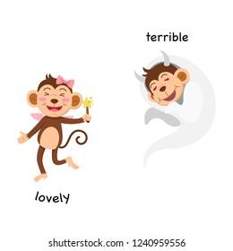 Opposite lovely and terrible  vector illustration