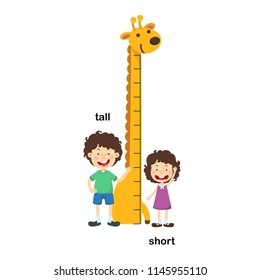Opposite tall and short vector illustration